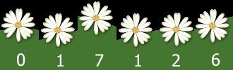 counter website